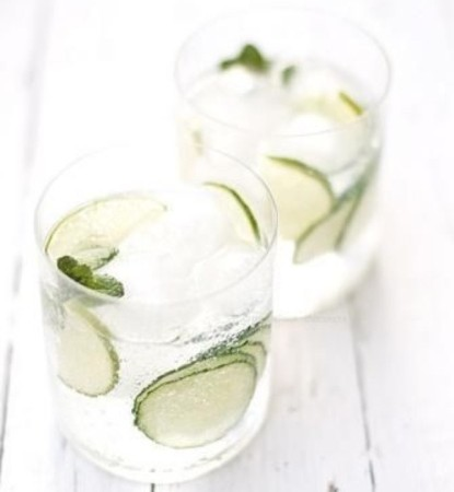 Gin tonic introductie